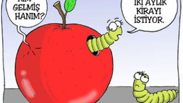 Seçmece Karikatürler