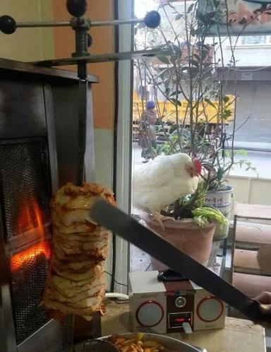 Tavuk döner ve sırasını bekleyen bir tavuk