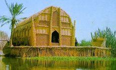 Irak'ta İlgi Çekici Bir Kültür : Bataklık Arapları
