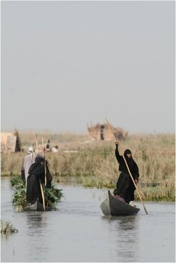 Irak'ın güneyinde yaşayan Bataklık Arapları