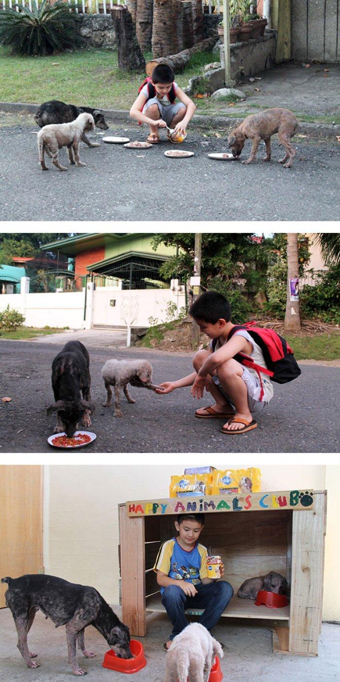 2 Sahipsiz hayvanlara barunak açan çocuk