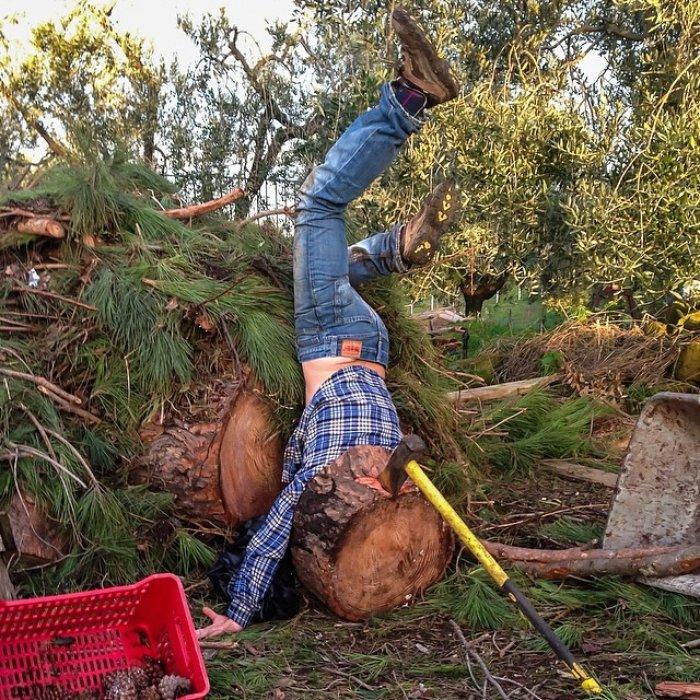 Ağaç keserken feci şekilde düşen adam